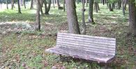 森林保健活動について