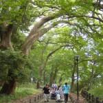 地域の自然を活用した健康づくり