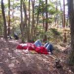 森の中でのリラクセーション