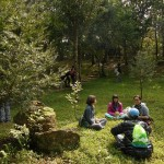 森林公園でのカウンセリングワークショップ