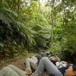 天然林の林床での横臥リラクセーションの時間