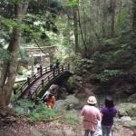患者さんとの森林療法のひととき。地域で保健休養のできる森林の再発見です。