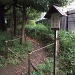 駒沢中学校の中にある樹林「タンチ山」
