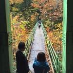 紅葉の吊橋は、みなさんの旅立ちを象徴していました