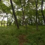 国分寺崖線での研修会