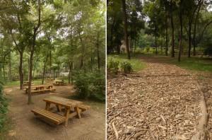 北京市郊外の森林公園。ウッドチップを敷き詰める手法がとられています。
