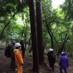 地域の山林の見直し踏査の集い(長野県筑北村の共有林にて)