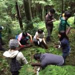 森林での整備活動&自分たちの居場所づくり(埼玉県飯能市の私有林で)
