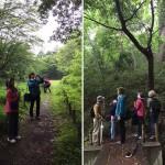 成城緑地での研修会。深遠な森林だけでなく、身近なみどりにも魅力はあります!