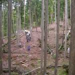 台風後の風倒被害木の中、「療法コース」を散策する保養客