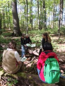 森の中でのワークショップの一コマ。様々なアイディアが実地に浮かびます!