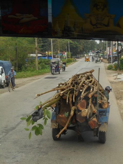 伐採木を運搬する車。
