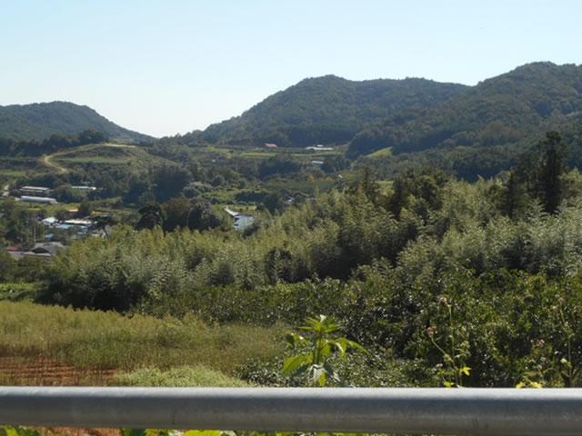 典型的な韓国の里山の風景 日本の風景ともよく似ています!